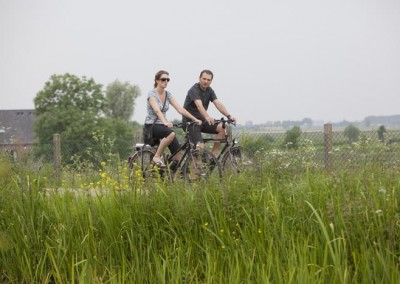 Biking in the Green Heart of Holland